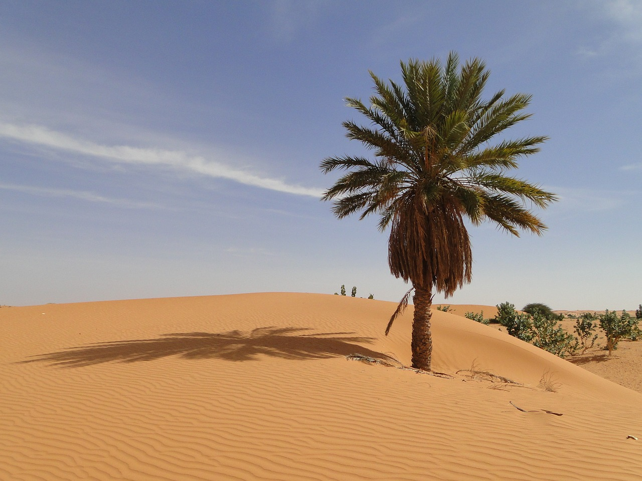 How to Enjoy Mauritania on a Budget
